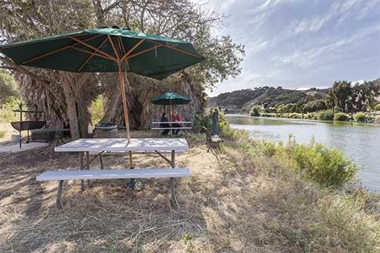 Tree House Studio in the Oaks